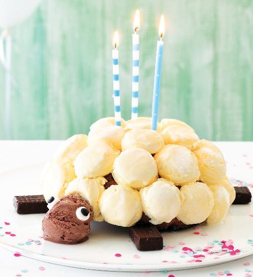Zmrzlinový dort ve tvaru želvy