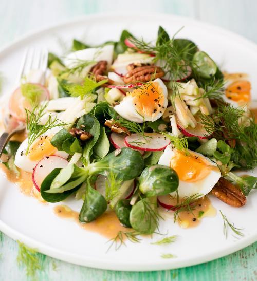 Salát s fenyklem, jablky, ředkvičkami, polníčkem a vejci
